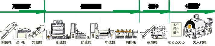 日本茶の製造工程