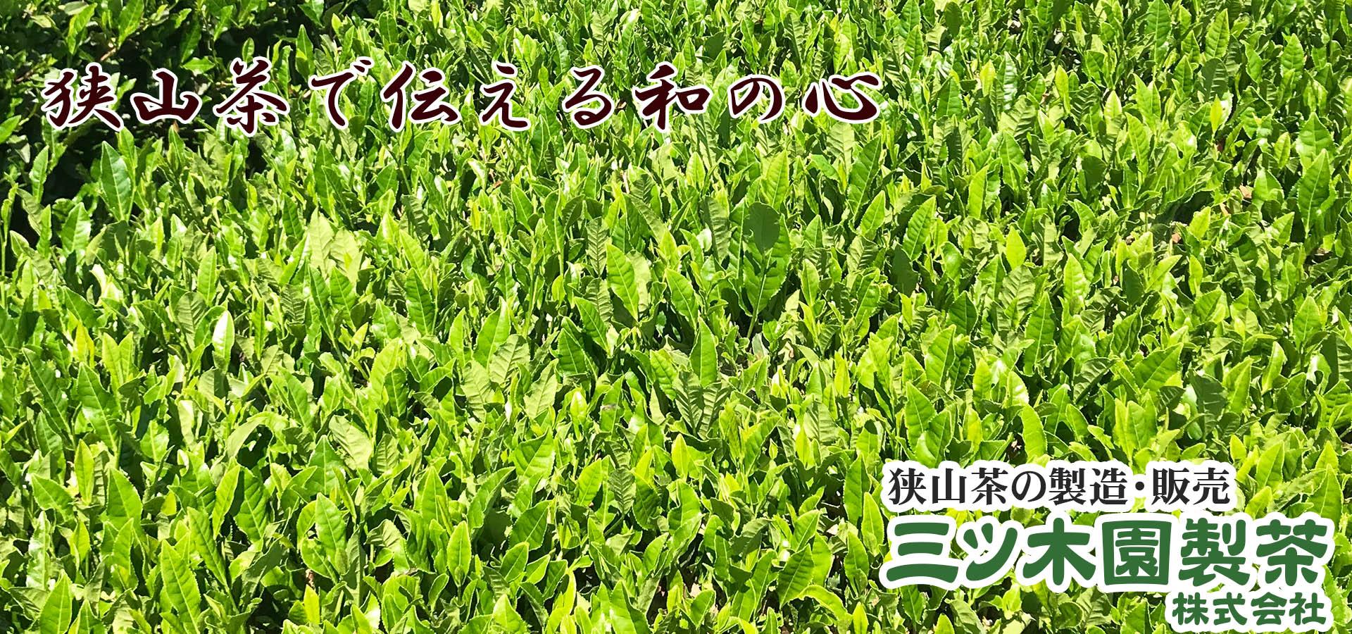 狭山茶の製造販売 オンライン販売 三ツ木園製茶